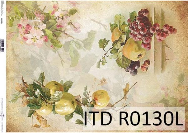 papier decoupage owoce, winogrona, jabłka, kwiat jabłoni*Paper decoupage fruits, grapes, apples, apple blossom