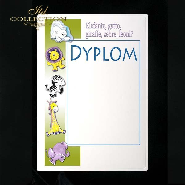 dyplom DS0144
