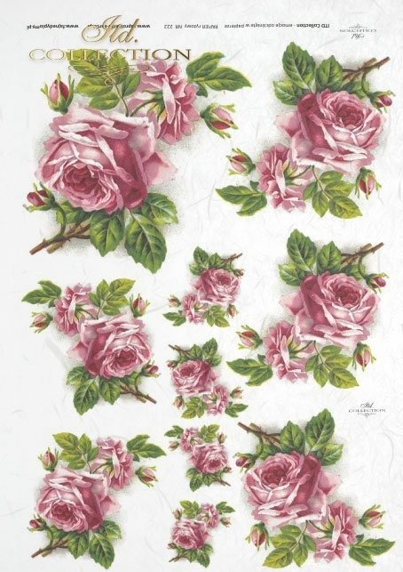 pink roses, flowers, flower, roses, beautiful roses, roses in buds