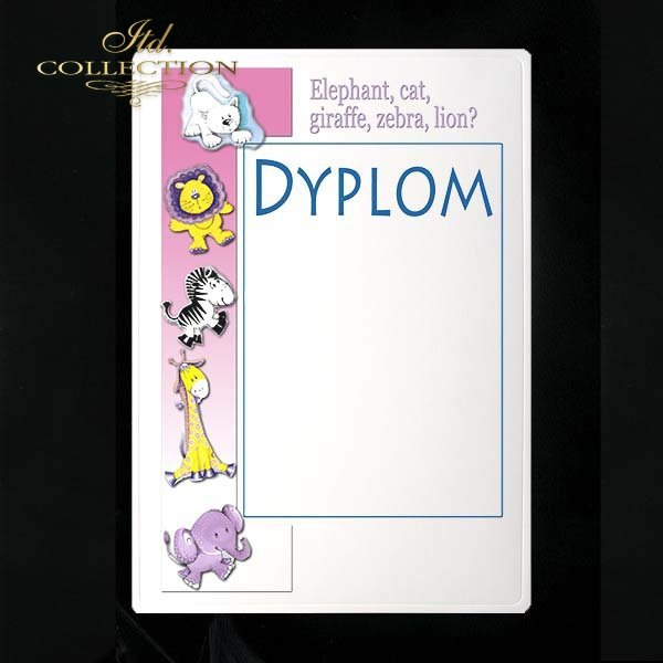 dyplom DS0132