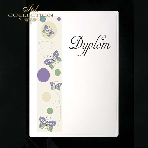 dyplom DS0066