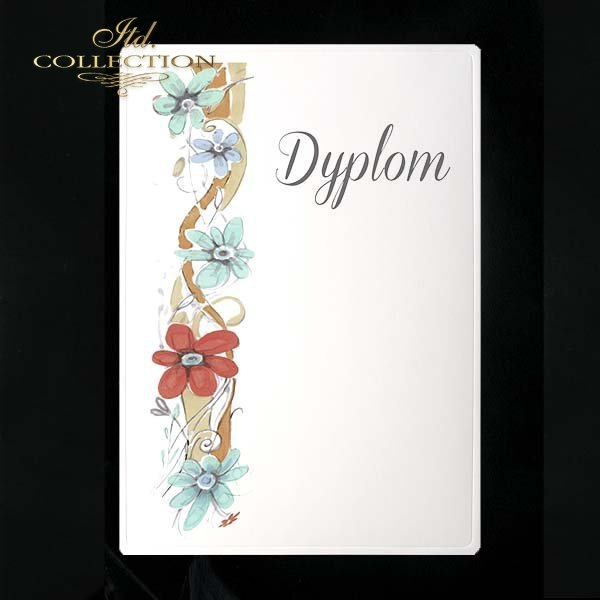dyplom DS0078