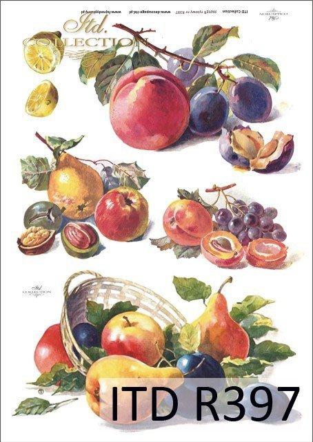 śliwka, śliwki, jabłko, jabłka, gruszka, gruszki, cytryna, cytryny, cytrynka, owoce, R397
