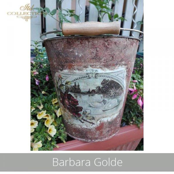20190716-Barbara Golde-R0346-example 01