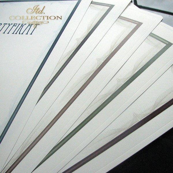 dyplom DS0290 certyfikat