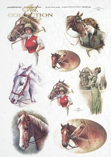 ladies, riding dress, horses, horses heads