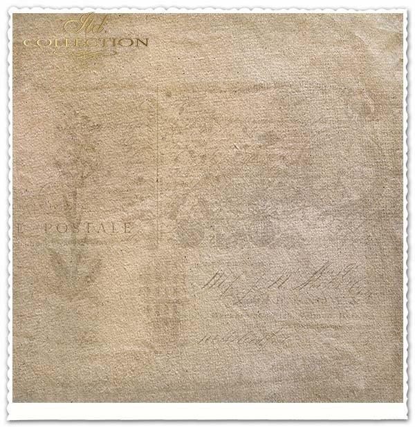 Papier do scrapbookingu - kwiaty, koliber*Paper for scrapbooking - flowers, hummingbird