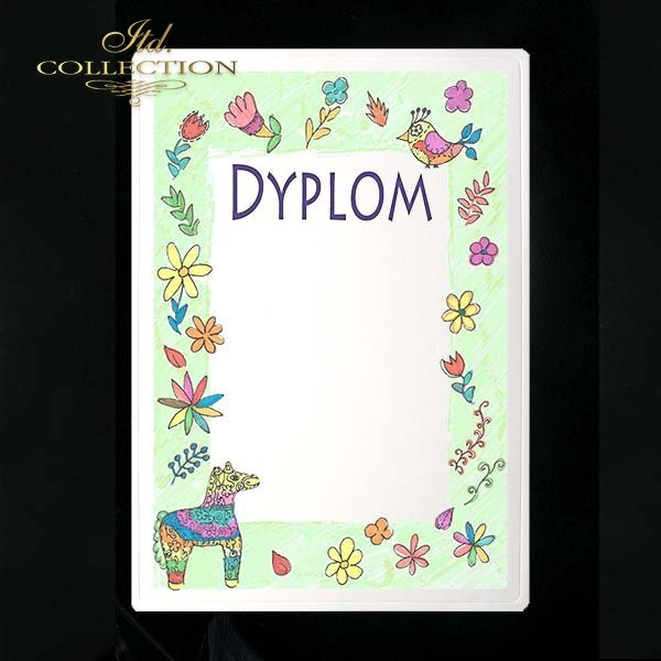 dyplom DS0228