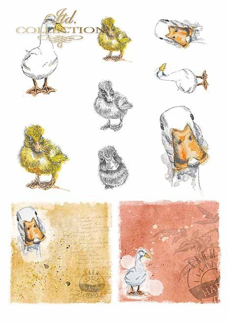 Papiery do scrapbookingu w zestawach - wesoła farma cz.2 * Papers for scrapbooking in sets - a cheerful farm vol.2