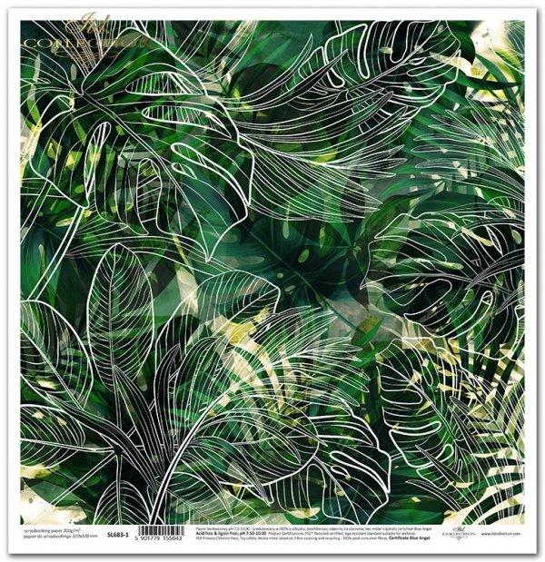 Seria Tropical dreams - liście monstery, tropikalne rośliny