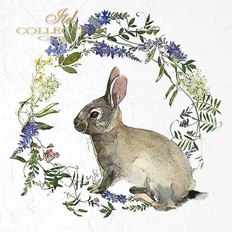 zwierzęta wielkanocne, wielkanoc, zające, zajączki, króliczki, wieńce, wiosenne, wianki, łąka, wianki wiosenne*easter animals, easter, bunnies, bunnies, rabbits, wreaths, spring, garlands, meadow, spring garlands