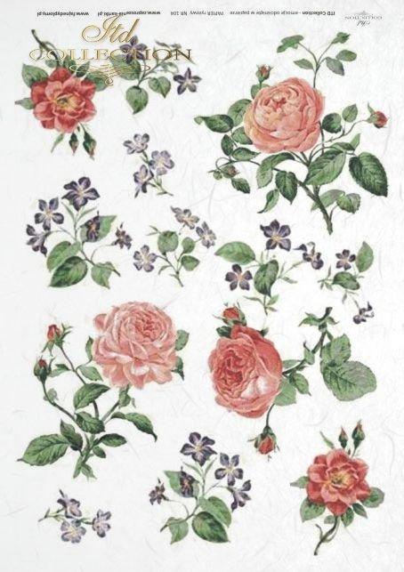 decoupage-flower-flowers-bud--leaf-leaves-rose-roses-garden-R104