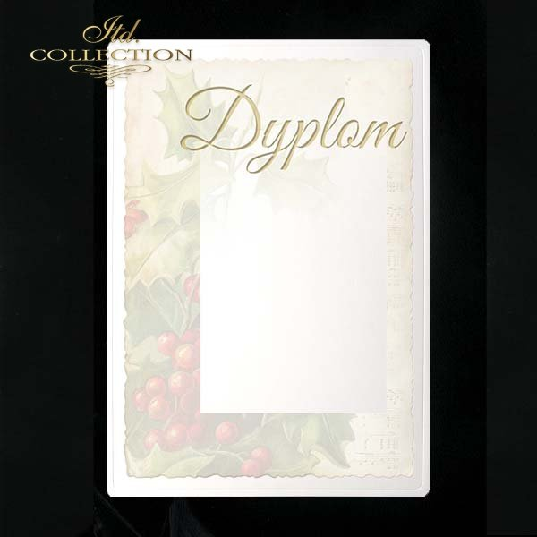 dyplom DS0053