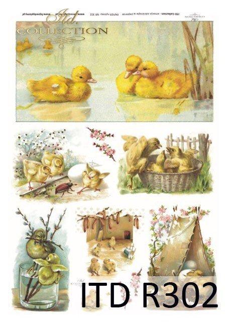 Wielkanoc, kurczaki, kurczaczki, kaczuszki, kwiatki, wiosna, jajka, pisanki, R302