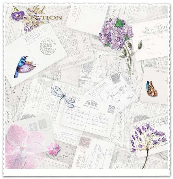 Papier do scrapbookingu - owady, koliber,kwiaty, kartki pocztowe*Paper for scrapbooking - insects, hummingbird, flowers, postcards