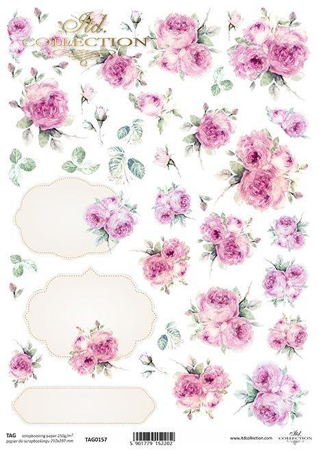 Tagi, róże, ramki, malowane róże, owal dekoracyjny*Tags, roses, frames, painted roses, decorative oval