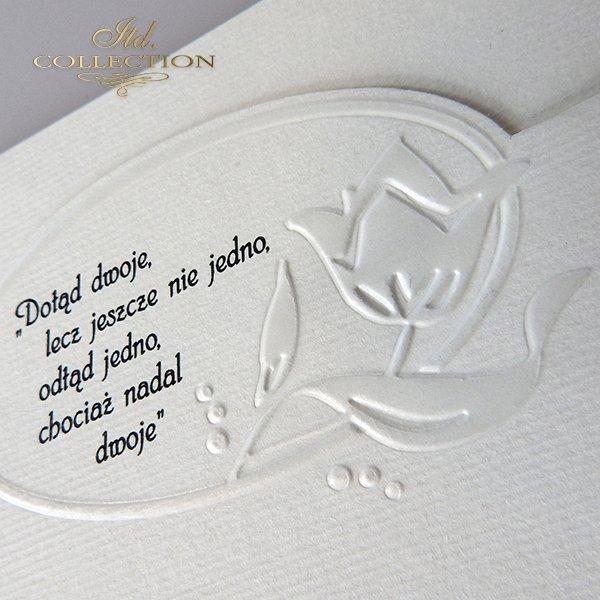 zaproszenia na ślub*wedding invitation*Hochzeitseinladungen*invitaciones de boda*svatební pozvánky