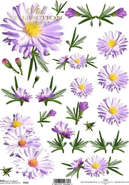 papier-ryżowy-decoupage-kwiatek-kwiaty-margerytki-łąka-ogród-R0142