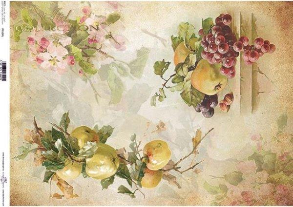 Papier decoupage Früchte, Trauben, Äpfel, Apfelblüten*Бумага декупаж фруктов, винограда, яблок, яблони*Papel decoupage frutas, uvas, manzanas, flor de manzana