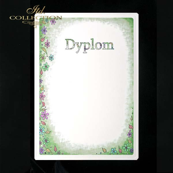 dyplom DS0262