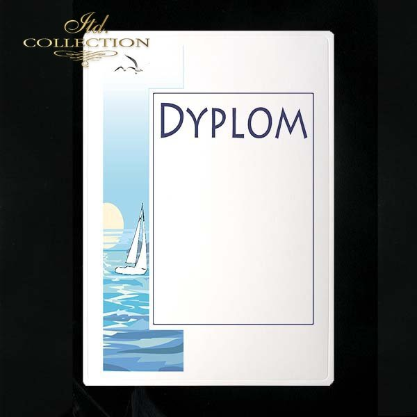 dyplom DS0149