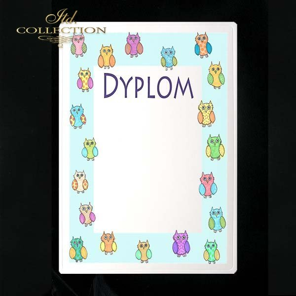 dyplom DS0247