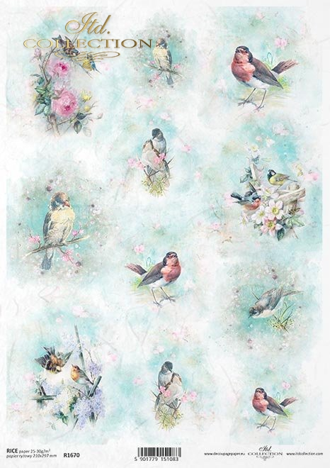 Shabby Chic, ptaszki, akwarele, wiosna * Shabby Chic, birds, watercolors, spring