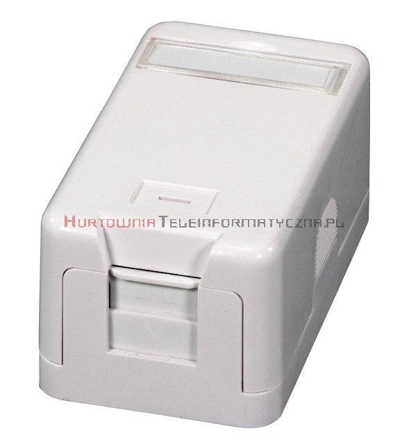 EFB Moduł puszka natynkowa na 1 x keystone z etykietą i ID