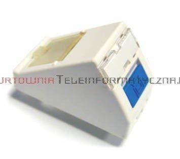 FIBRAIN DATA adapter kątowy 1mod. 1 x RJ45 z plakietką opisową i klapką.