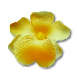 Miltonia kwiat cukrowy na tort 5cm żółty 1szt