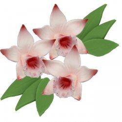 Zestaw cukrowe kwiaty KATLEJA z listkami (11 kolorów)