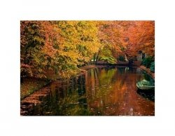Jesiennie - jeziorko w lesie - reprodukcja