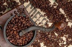 Fototapeta do kuchni - Coffee Beans and Grinder - 115x175 cm