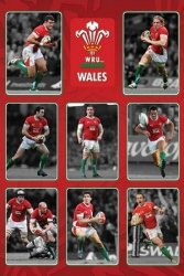 Wales R.U (Players) - plakat