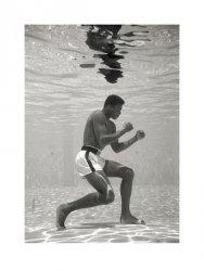 Muhammad Ali (Underwater) - reprodukcja