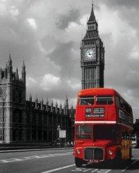 London Red Bus - Czerowny autobus - plakat