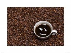 coffee smile - reprodukcja