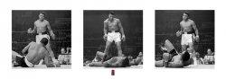 Muhammad Ali (Liston Triptych) - reprodukcja