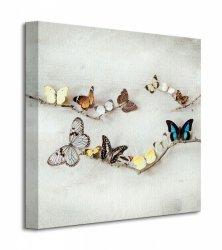 Obraz do salonu - Array Of Butterflies
