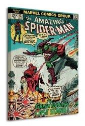 Spider-Man (Green Goblin) - Obraz na płótnie