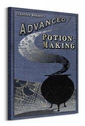 Harry Potter (Potion Making) - Obraz na płótnie