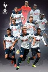 Tottenham Kane, Lamela, Sissoko, Alderweireld, Vertonghen - plakat