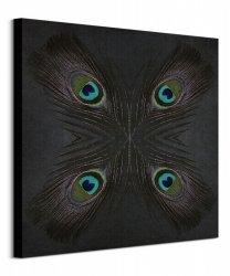 Peacock Feather Star - obraz na płótnie