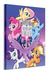 My Little Pony (Adventure and Friendship) - obraz na płótnie