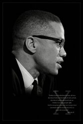 Malcolm X (Brotherhood)  - plakat
