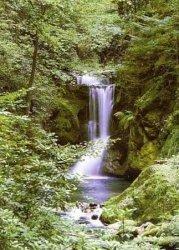 Fototapeta na ścianę - Wiosenny Wodospad - 183x254 cm