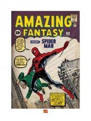 Spider-Man (Issue 1) - reprodukcja