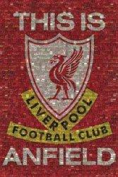 Liverpool (mozaika) - plakat
