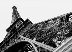 Fototapeta na ścianę - Paryż, wieża Eiffel - 254x183 cm