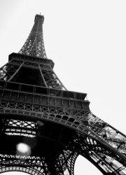 Fototapeta do salonu - Wieża Eiffel, Paryż - 183x254 cm